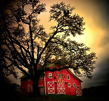 An Old Red Barn ~ Finley Refuge ~ by Charles & Patricia   Harkins ~ Picture Oregon
