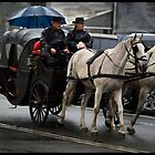 Horses &  Carriage  3 by John Van-Den-Broeke