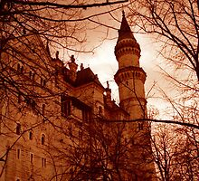 Dracula's Castle by skorphoto
