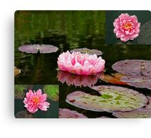 Lilies in Pink Canvas Print