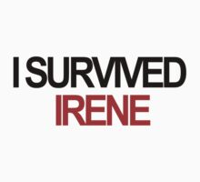 I Survived Irene by aaTman