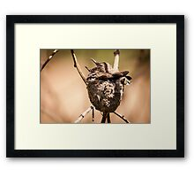 Brother`s love .... Framed Print
