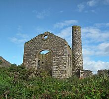 Cornish Tin Mine by lynn carter