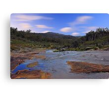 Beraking Brook - Western Australia  Canvas Print