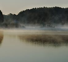 Lake, fog and forest by Antanas