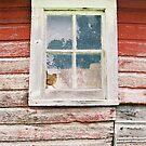 Old Barn Window by Glennis  Siverson