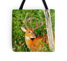 Master of Thorny Realms  Tote Bag