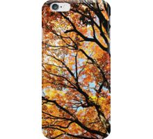Wild Autumn iPhone Case/Skin