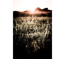 Dying Light Photographic Print