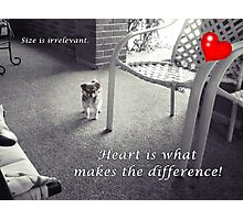 You gotta have heart! Photographic Print