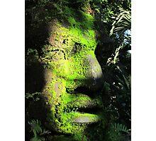 Artcraft on the island of the River Cuale - Artesania en la Isla Cuale Photographic Print