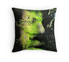 Artcraft on the island of the River Cuale - Artesania en la Isla Cuale Throw Pillow