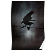By crow light Poster