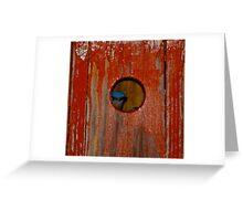 blue bird Red Box Greeting Card