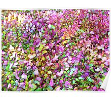 """Pastel Ground Cover"" Poster"