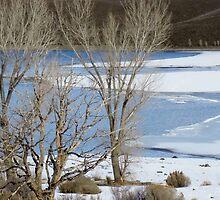 Winterscape No. 2 by Annie Adkins