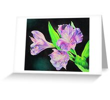 Peruvian lily Greeting Card