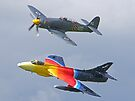 """Miss Demeanour"" Hunter - Sea Fury T20 by Colin  Williams Photography"