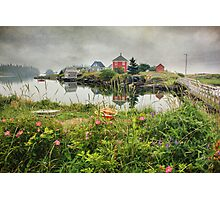 Foggy Day at Stonehurst I Photographic Print