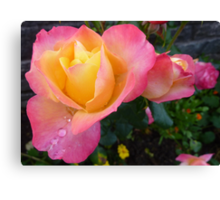 Pink And Yellow Beauty Canvas Print
