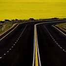 Canola Road by Erika Gouws