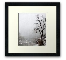 Zion Snowstorm Framed Print