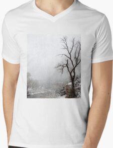 Zion Snowstorm Mens V-Neck T-Shirt