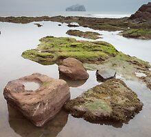 Bass Rock by Christopher Cullen