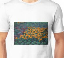 Longwood Gardens - Spring Series 109 Unisex T-Shirt