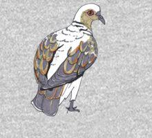 Turtle Dove (Streptopelia turtur) Kids Clothes