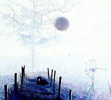 Orb Reporting Photograph # 12 -Color Reversed by PaulCoover