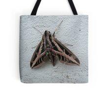 Sphinx Moth After Rain Tote Bag