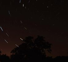 Starved Rock Star Trails by Richard Williams