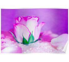 Fleur VII Poster