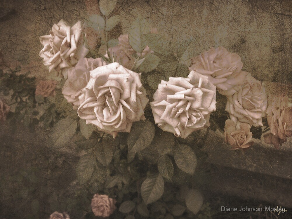 Old Pink by Diane Johnson-Mosley