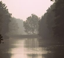 In the Mist by ienemien
