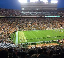 Rocky Top, Vols Home Game by Emily905