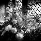 Flowers at St Giles by Peter Tachauer