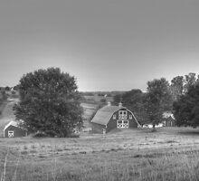 Early Morning - Glenwood, Maryland by James Brotherton
