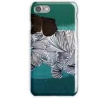 Lib 227 iPhone Case/Skin