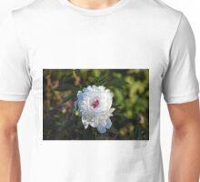 Longwood Gardens - Spring Series 120 Unisex T-Shirt