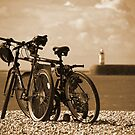 Cycle to the Sea by mikebov