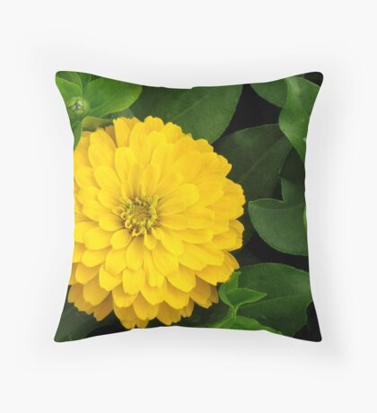Yellow Zinnia Throw Pillow