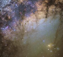 Rho Ophiuchi wide-field by Barry Armstead
