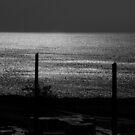another sea by Nikolay Semyonov