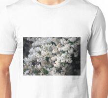 Longwood Gardens - Spring Series 125 Unisex T-Shirt