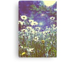 Flowers in Hyde Park Canvas Print