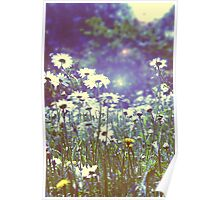 Flowers in Hyde Park Poster