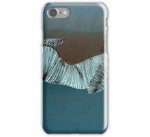 Lib 233 iPhone Case/Skin