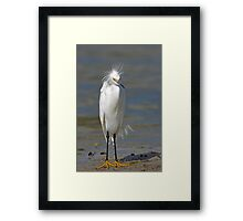 what are you laughing at ... Framed Print